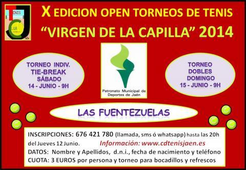 cartel virgen capilla 2014